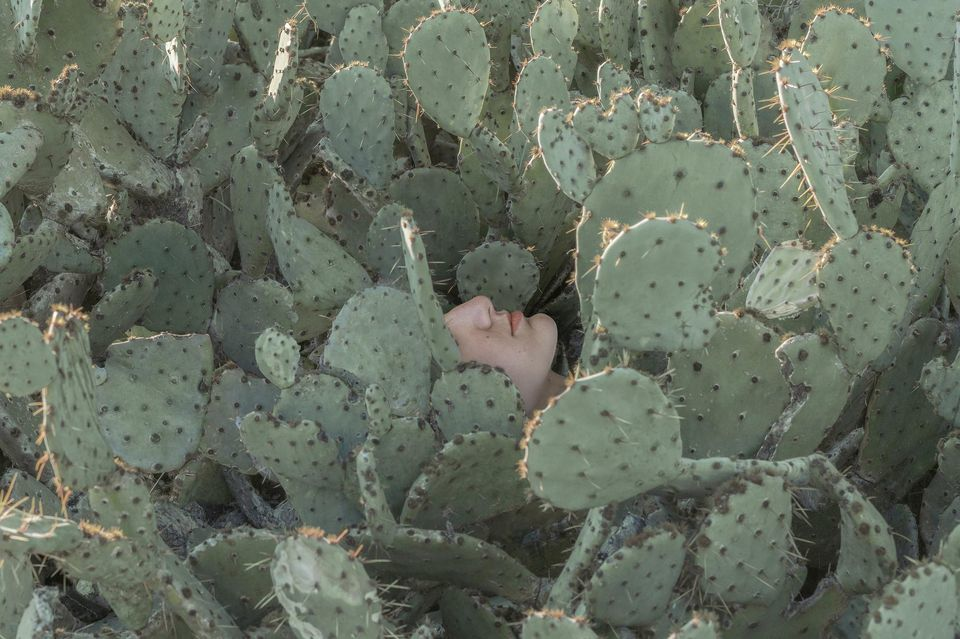 Issue de la série «As Usual», Austin, (Texas, Etats-Unis). Photo Brooke DiDonato. Agence VU